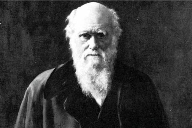 """Ya lo decía Darwin: """"En Argentina todo funcionario público es sobornable"""""""