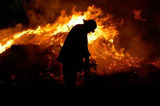 Comienza la época de incendios. ¿Qué estamos haciendo para impedirlos?