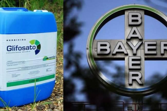 Bayer, Monsanto y la Siesta Viciosa de la Justicia Argentina.