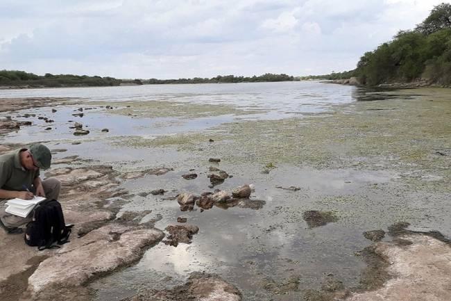 Santiago del Estero: asombro por el hallazgo de restos fósiles de perezoso gigante