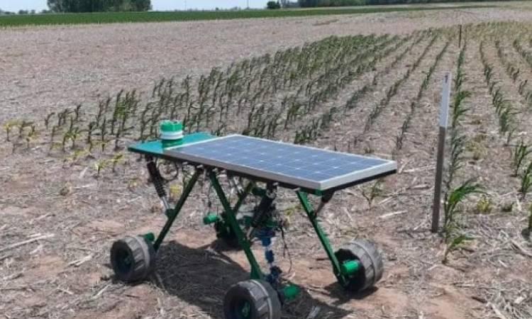Robot quita malezas con rayo láser y funciona con luz solar