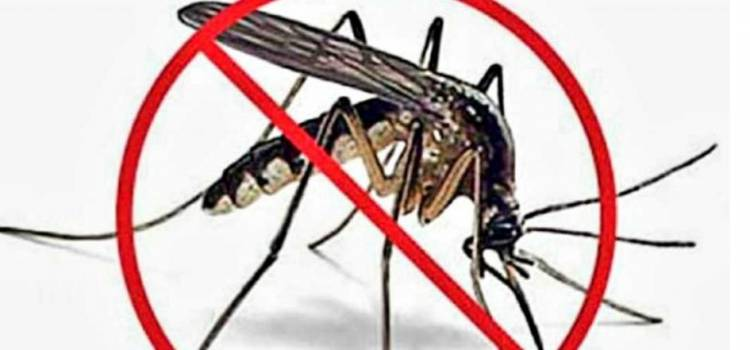 "Comenzó la campaña ""Chau mosquito"" en Mendiolaza"
