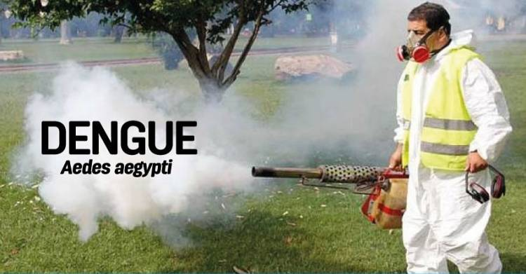 Los casos de dengue en Córdoba ascienden a más de  tres mil