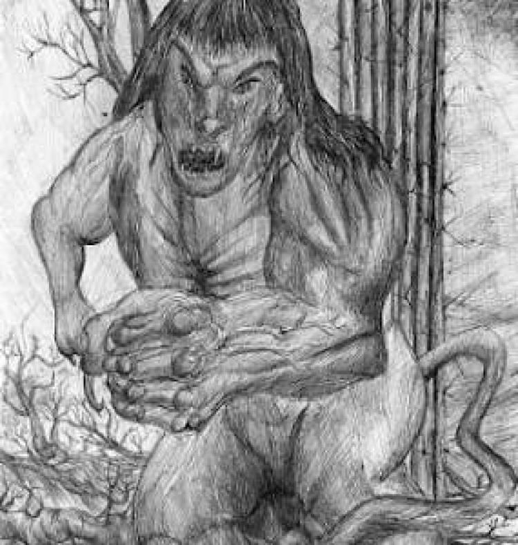 La Leyenda del Uturunco: El demonio del Uritorco