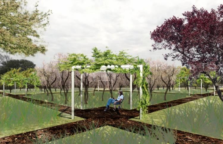 Villa María: El municipio recibirá árboles de Concordia para la futura Plaza de los Frutales