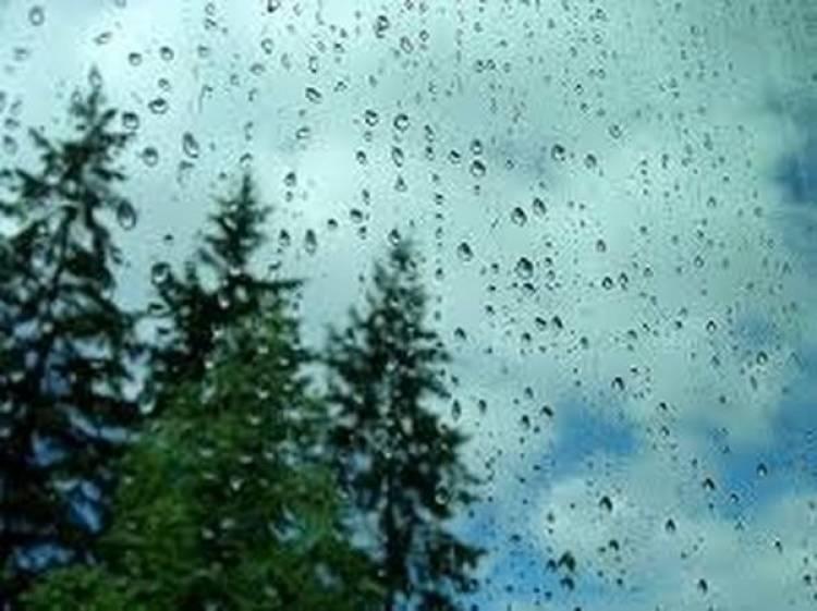 Llegó la lluvia!!! Gracias a todos ustedes que lo pidieron en las redes!!!